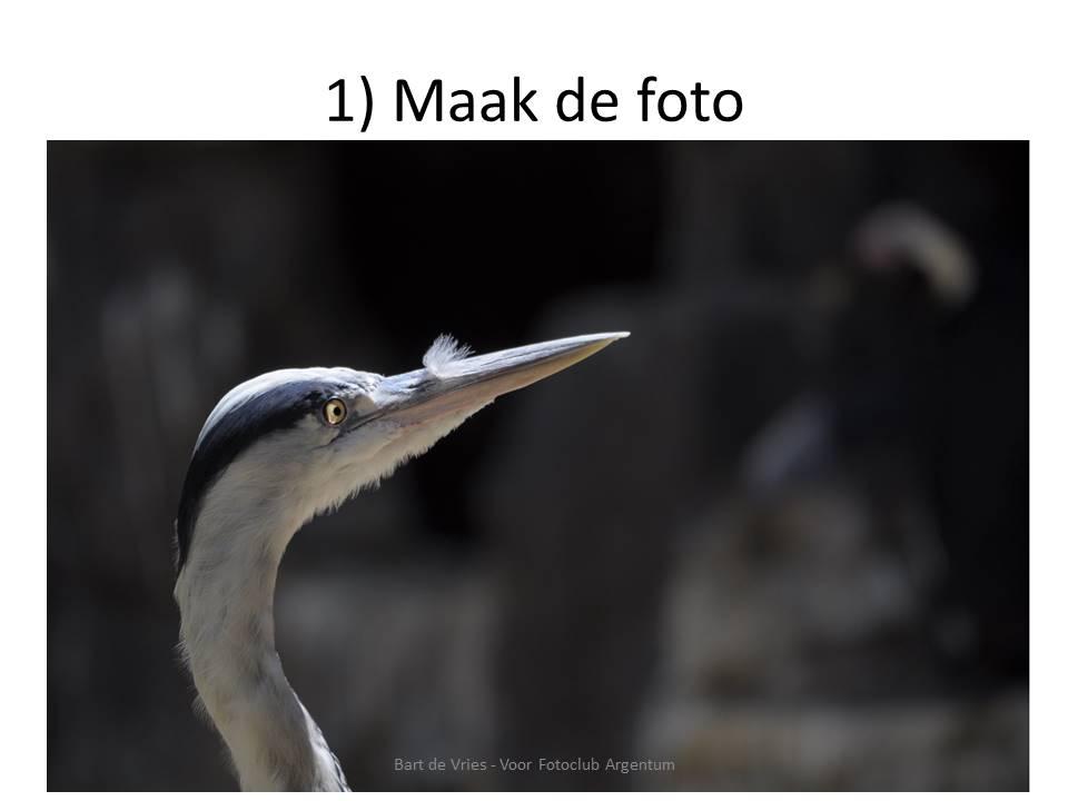Foto Verkleinen